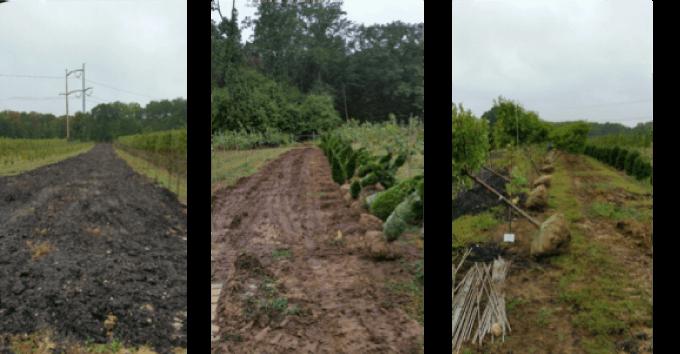 abby farms fall preperation