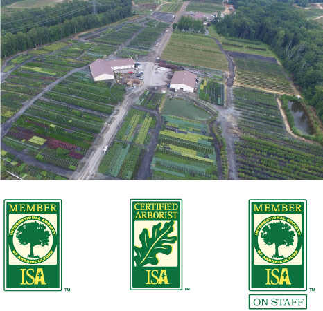 aerial view of abby farms